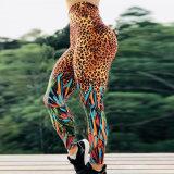 O mais vendido na Europa Leopard Imprimir Perneiras Sexy Exercício Ioga Fitness respirável Perneiras Mulher Desgaste Althetic