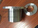 Raccord de tuyau en acier inoxydable DIN2999, bride