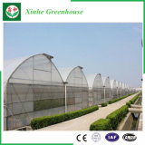 Serra di verdure del film di materia plastica del fiore della Multi-Portata