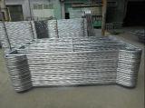 5ftx10FT Corral de bovins en acier galvanisé de bord