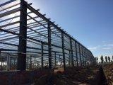 Helle Stahlkonstruktion verschüttet für Werkstatt (SSW-416)