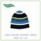 2017新式の昇進の冬の暖かいニットの帽子