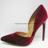 5 ботинок повелительницы платья высокой пятки способа женщин типа цветов новых с остроконечным пальцем ноги