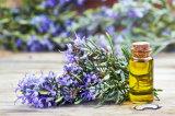 100% puro y natural del aceite esencial de romero precio al por mayor
