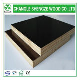 18mm Competitive Selling Well WBP Black Formwork Plywood
