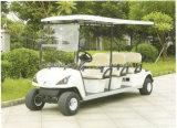 6人のセリウムはゴルフスポーツの電気バギーを承認する