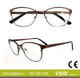 Het Optische Frame van het Frame van het oogglas met Uitstekende kwaliteit (64-B)