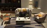 Sofà del tessuto di stile dell'Europa, sofà moderno, sofà di disegno semplice (M609)