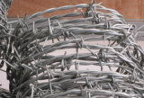 工場高い抗張塀の有刺鉄線