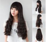 Venda por grosso de Renda Total Peruca Virgem de cabelo humano Perucas