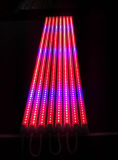 Sistemi idroponici rossi 18W dell'azzurro 4FT i crescenti coltivano la lampadina