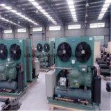 Kühlraum, Zwischenlage-Panel, kondensierendes Gerät