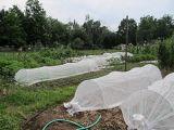 Крышки рядка Non-Woven ткани плавая для аграрной пользы