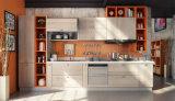 Disegno della cucina di legno solido della noce