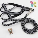 Corda ambulante Noctilucent di nylon riflettente del cane di animale domestico dei guinzagli del cane