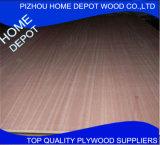 Boa qualidade de compensado de madeira de eucalipto China Original
