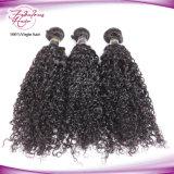 Tissage bouclé de cheveux humains de cheveu malaisien en gros de Vierge d'usine
