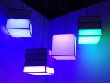 쇼핑 센터 /Hotel를 위한 점화가 Dimmable 실내 LED 거는 펜던트에 의하여 점화한다