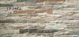 Mosaico de la pared de cerámica vidriada de inyección de tinta Pringting 3D digital 300x600mm (5D2452)