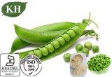 Proteína el 80%, polvo de la proteína del guisante del 85%/Pisum Sativum L. del fabricante
