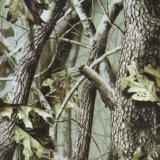 Camouflage de Kingtop et film hydrographique imprimable en gros d'impression de transfert de l'eau d'arbre pour le plongement hydraulique avec 1m Wdf9025-3 large