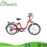 CmsTdf02z山の自転車Shimano 6 速度