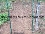 """1 """" compensation de fil/treillis métallique hexagonaux galvanisés de poulet"""