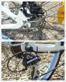 2017 최신 인기 상품 성인 여자 바닷가 함 36V 전기 자전거
