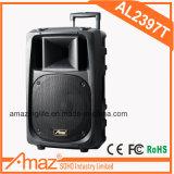 Verkaufsschlager-Karaoke-Laufkatze-Lautsprecher mit Mikrofon