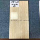 Foshan-Baumaterial-Fußboden-natürliche Wand-Keramikziegel