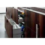 De Keukenkasten van het Meubilair van het Triplex van het Ontwerp van het huis met Eiland