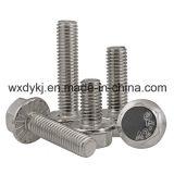 Hex Washer Head DIN 6921 Attache en acier inoxydable