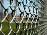 Frontière de sécurité enduite de treillis métallique de frontière de sécurité de jardin de Galvanized/PVC/de diamant
