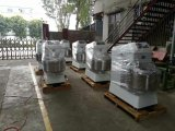 10L/20L/30L/40 L/50L/60L/80L/100L Batidora para alimentos Panadería pan Cake Machine equipamiento de cocina