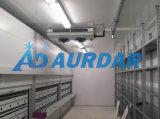 中国の工場価格の冷凍食品のための熱い販売の低温貯蔵部屋