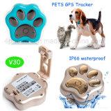 Traqueur imperméable à l'eau de vente chaud de 2017 animaux familiers GPS (V30)