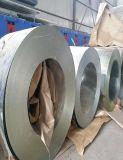 A cor revestiu a bobina de aço galvanizada mergulhada quente Prepainted