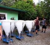 L'agricoltura di bestiame automatica si asciuga/alimentatore bagnato per il maiale