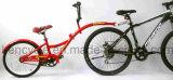 Braccio di /Folding del treno della montagna di Fashinable 20inch per memoria facile/bicicletta in tandem per due cavalieri/bici in tandem