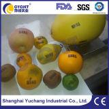 Cycjet Alt390 Eco Código de la fecha de la impresora de inyección de tinta de huevo