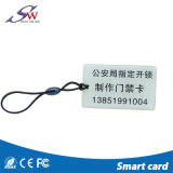 체조 센터를 위한 화려한 13.56MHz Ntag213 RFID 에폭시 Keychain
