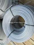 PVC Coated를 가진 직류 전기를 통한 Steel Wire Rope