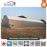 산업 창고에 사용되는 강철 다각형 구조 천막