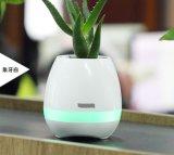 Heißer intelligenter Noten-Musik-Klavier Bluetooth Lautsprecher mit Blumen-Potenziometer-Licht