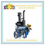 Wp7 Weichai de haute qualité de la série du moteur diesel