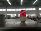 기계로 가공한 압박을 회전하는 환약 정제 (ZPT-20)