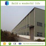 Struttura d'acciaio di disegno della costruzione che costruisce il gruppo di lavoro Multi-Storey del magazzino