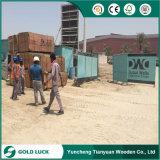 Пленка поставщика фабрики Linyi морская смотрела на цену переклейки для конкретного здания форма-опалубкы