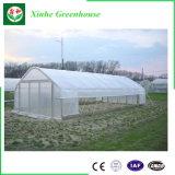 野菜および庭のための単一のスパンのフィルムの農業の温室