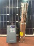 太陽ポンプ浸水許容ねじポンプ